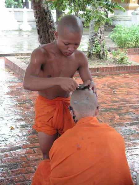 Luang_prabang_monk_shaving_head_2_2