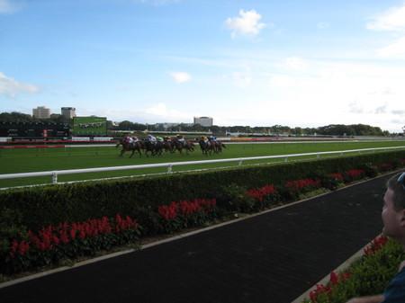 Race_3_royal_randwick_sydney