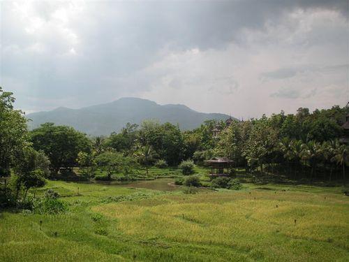 Chiang_mai_four_seasons_4